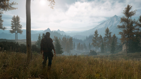 Days Gone - screen